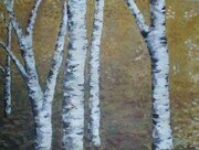 Birch on Gold