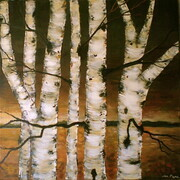 Birch in Front of Gold Horizon