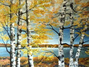 'Our Beautiful Birch'     3'x4'